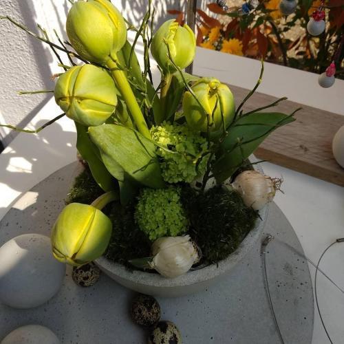 Tulpen in BetonOstern2019